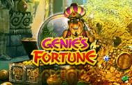 Слоты Genie's Fortune в Вулкан